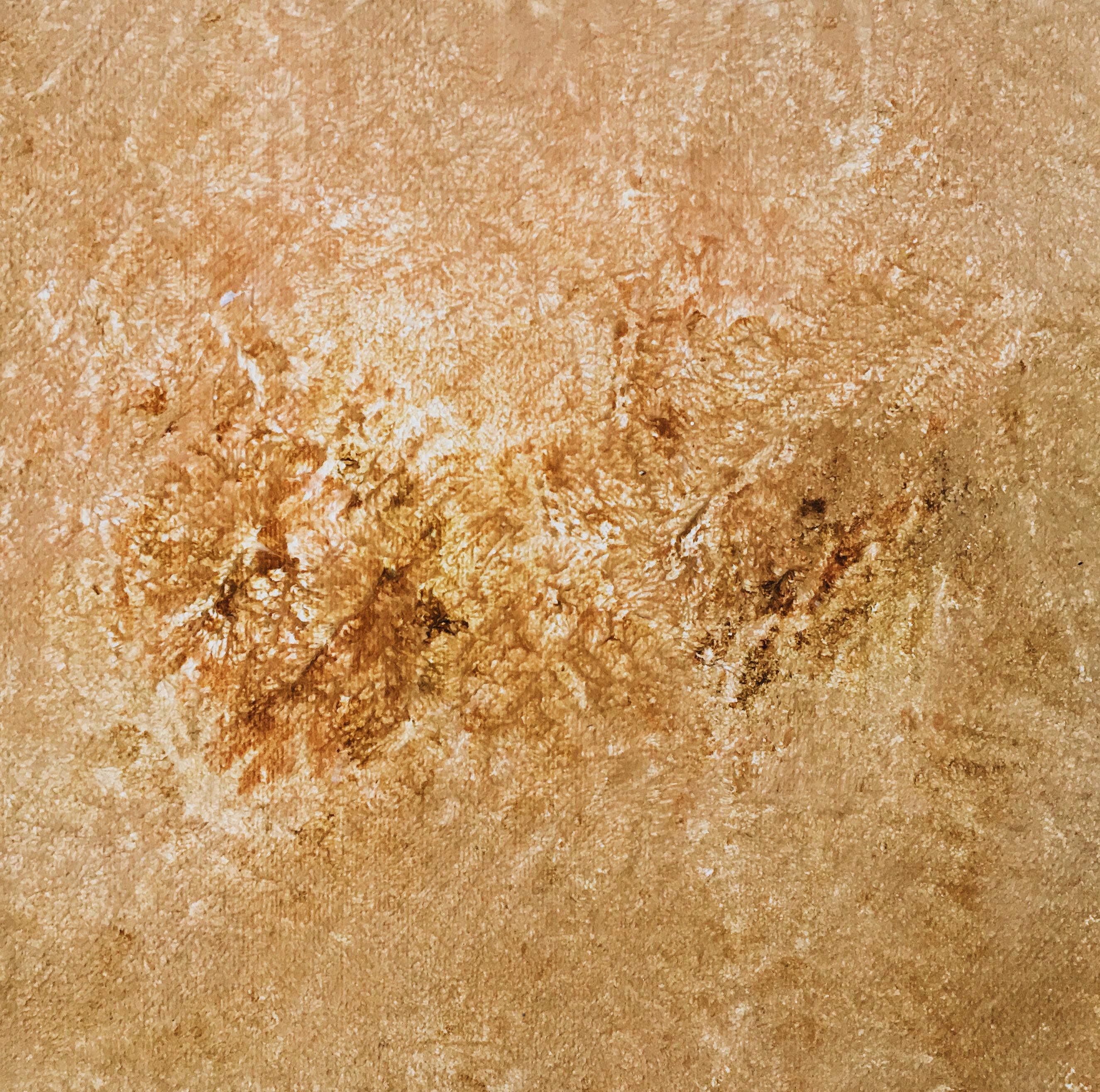 Marine Bonzom - Artiste Peintre Biarritz - 37